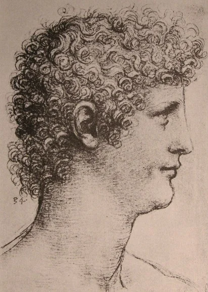 Ученик Леонардо Салаи