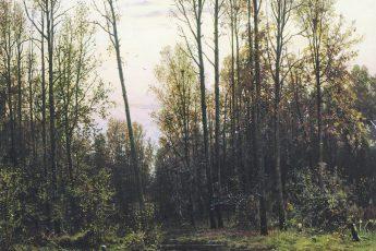 Иван Шишкин «Лес весной», 1884 год