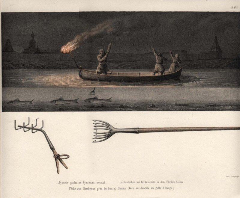 Рисунки к исследованию рыбных и звериных промыслов на Белом и Северном морях, 1863 г.
