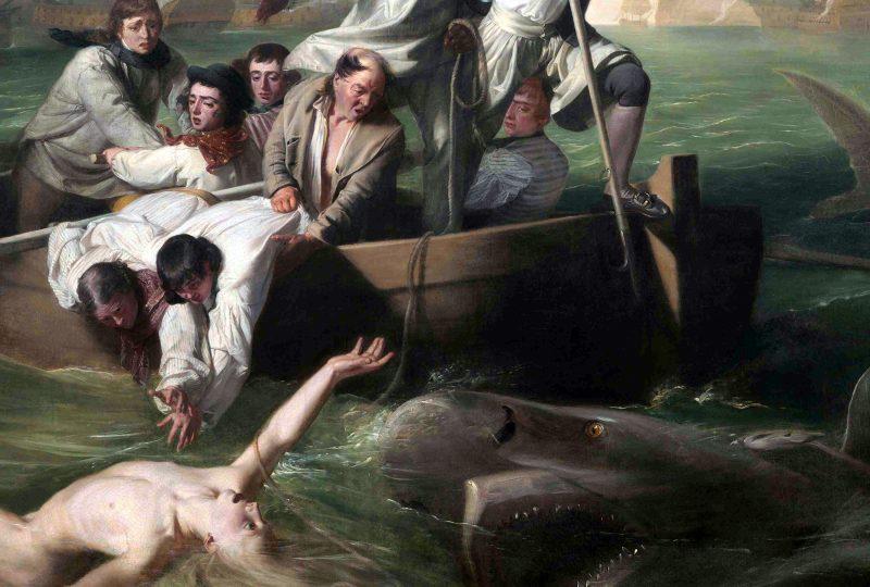 Джон Синглтон Копли «Брук Уотсон и акула», фрагмент